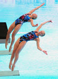 http://img108.imagevenue.com/loc449/th_43219_diving_world_champs_shanghai_2011_041_122_449lo.jpg